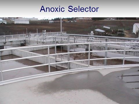 WWTP Anoxic Selector