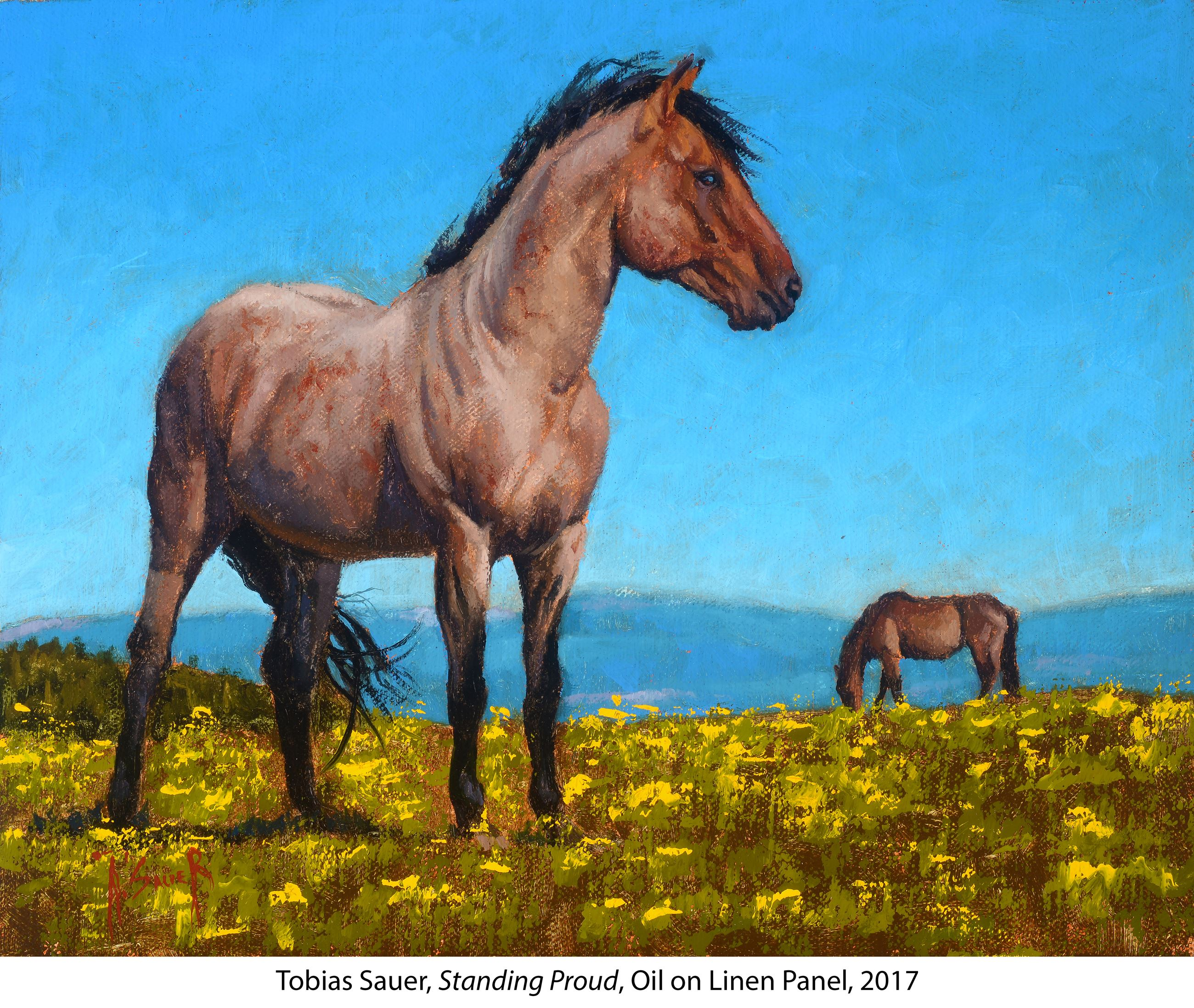 Two brown horses standing in a field