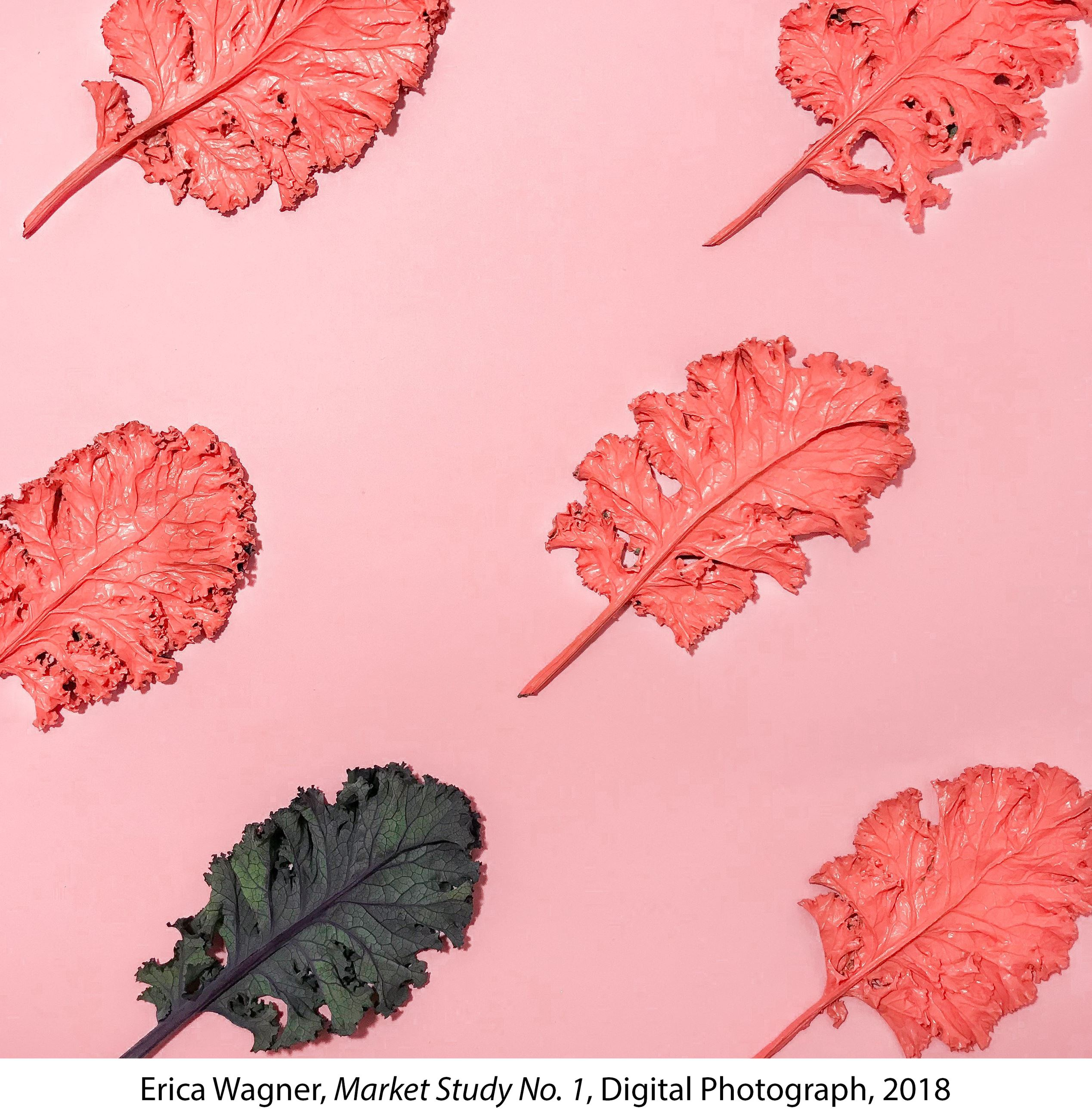 Kale leaves dipped in red paint