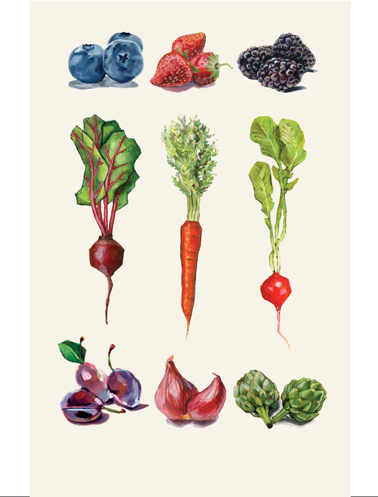 Drawing of fruits and vegetables