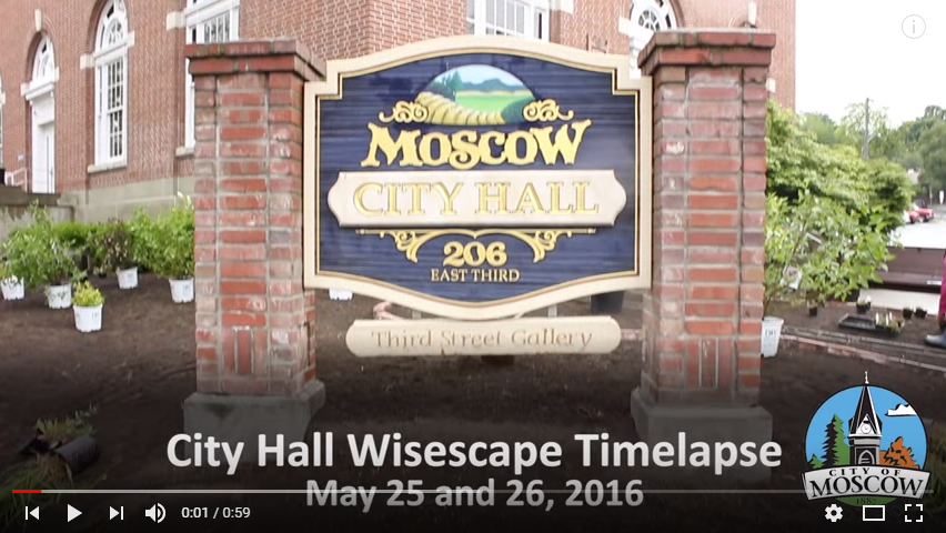 City Hall Wisescape Time Lapse